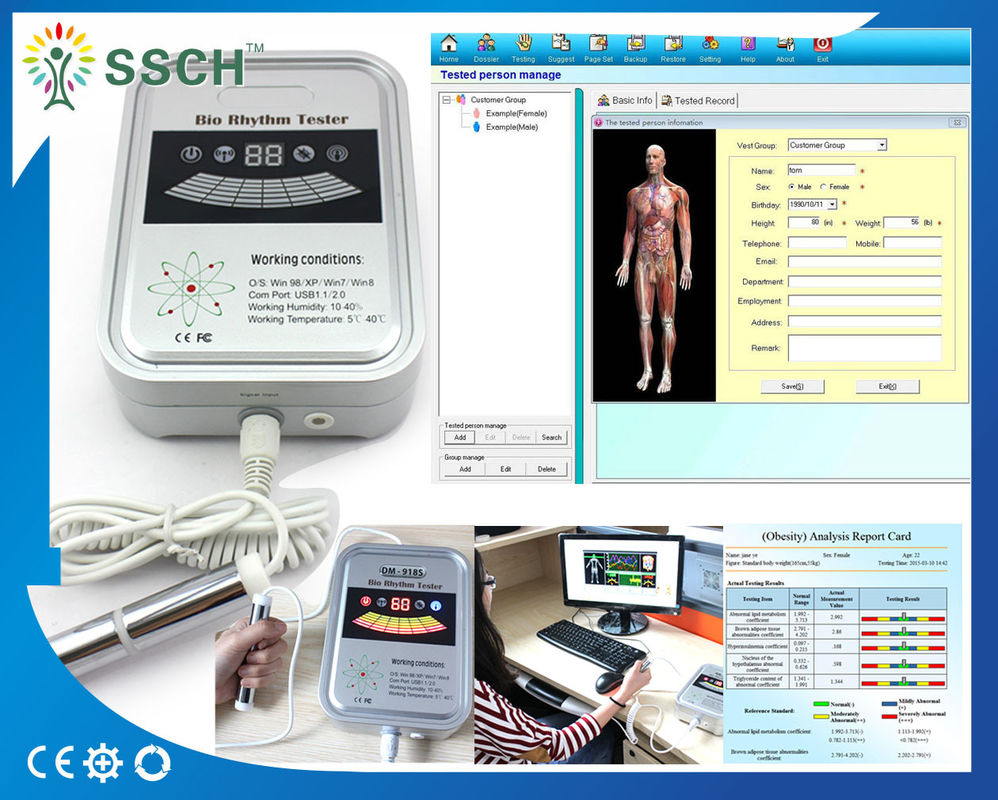 Professional Accurate Quantum Resonance Magnetic Body Health Analyzer Machine